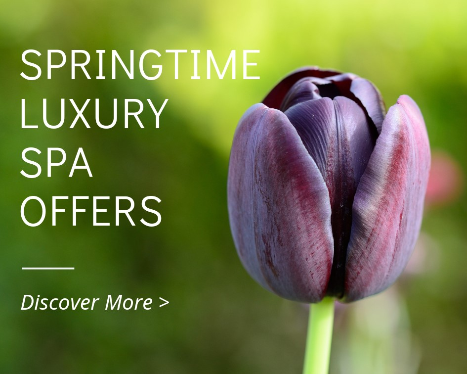 SPRINGTIME SPA OFFERS 2019 - GREECE